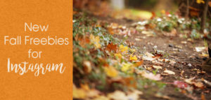 Fall Freebies For Instagram